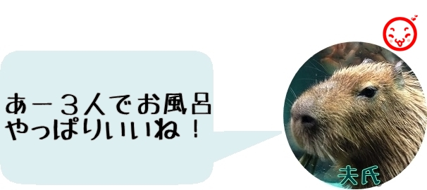 f:id:fulmoon3002:20170312000916j:plain