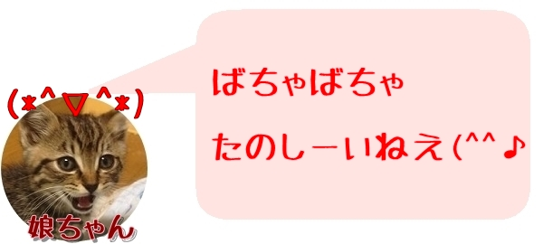 f:id:fulmoon3002:20170312000924j:plain