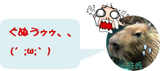 f:id:fulmoon3002:20170312003013j:plain