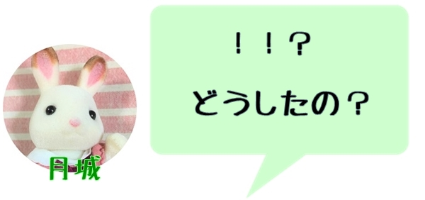 f:id:fulmoon3002:20170312003955j:plain