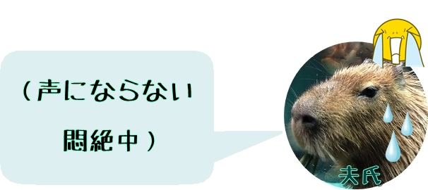 f:id:fulmoon3002:20170312064952j:plain